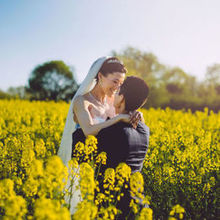 220x220 sq 1516142098 ddca656372827026 1516142097 5804c593bce013d3 1516142097864 2 yellow fields wedd