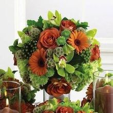 220x220 sq 1516544024 354d209054718339 1516544024 a74b4a44e6fc1df9 1516544023947 4 autumn centerpiece