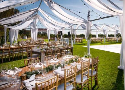 Sacramento wedding rentals reviews for 126 rentals standard party rentals junglespirit Image collections