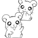 130x130 sq 1299210960875 anihamsters