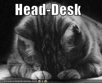 Image result for head on desk meme