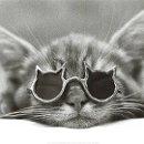 130x130 sq 1313769829580 cat1