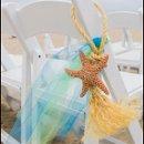 130x130_sq_1337369699272-starfish8