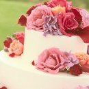 130x130_sq_1346776375855-weddingcake