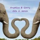 130x130 sq 1374695472693 elephants part2
