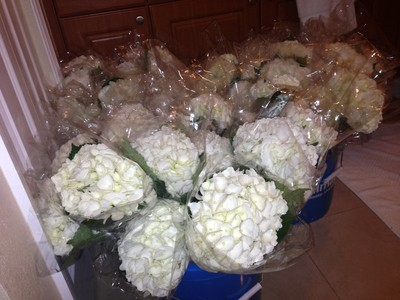 Wholesale florist good or bad reviews Weddings Do It