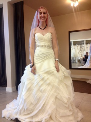 Its TOTALLY My Personality And Great For Pictures But REALLY Expensive A One Time Thing What Do You Think Attached Is Pic Of Dress