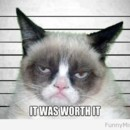 130x130 sq 1413830163186 grumpy cat it was worth it