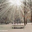 130x130_sq_1356157784526-snowdaybymelimelowfotosd5otnms