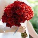 130x130 sq 1229295889904 roses