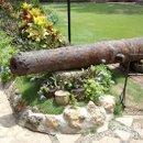130x130_sq_1232622197250-cannon