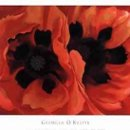 130x130_sq_1234824289906-oriental-poppies-1928-print-c10050098