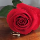 130x130 sq 1384400740067 engagement ring and rose   cop