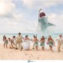 130x130 sq 1421093110116 wedding shark