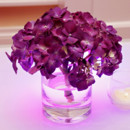 130x130 sq 1460312892644 wedding color purple centerpieces tonya malay phot