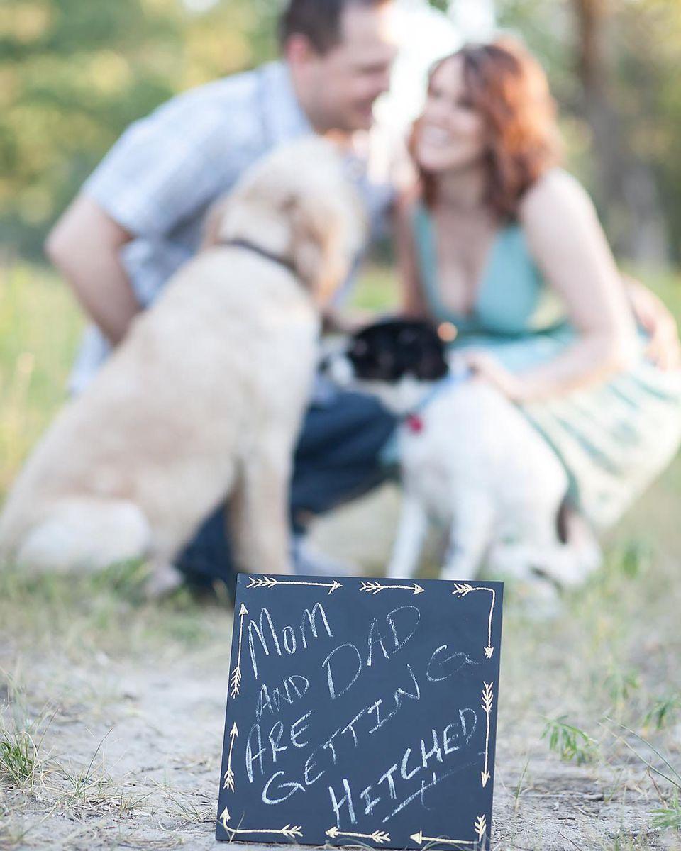 Fancy Tuxedo For Dogs Wedding Elaboration - Womens Wedding Dresses ...