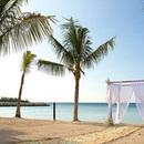 130x130 sq 1457132916 13bf633fa409242c jamaica destination wedding riu palace funjet 4