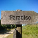 130x130 sq 1468545407331 paradise