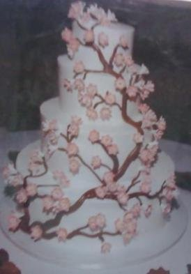 albertsons wedding cake reviews wedding cakes weddings wedding forums weddingwire 10658