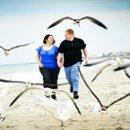130x130_sq_1271618608372-seagulls