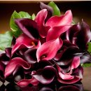 130x130 sq 1297578915797 bouquet