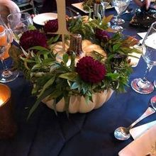 Photo of Robertson's Flowers & Events in Wyndmoor, PA