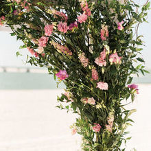 Photo for Focus Floral Review - Wedding Arch