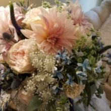 Photo for Posies by Patti Review