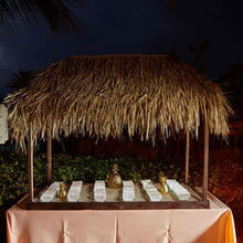 Photo of Carrie Darling Events in Naples, FL - New Ground Photography