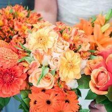 Photo For Blumengarten Florist Review   Bride + Bridesmaidu0027s Bouquets