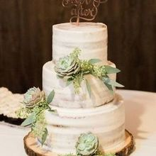 Photo for Rita's Floral Designs LLC Review - Succulents for the wedding cake by Rita.