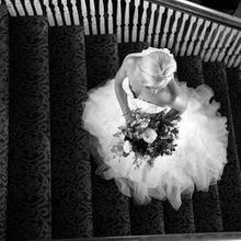 Photo for Castorina Photography & Films Review - Love the black and white