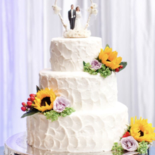 Photo of Wanda's Cake Decorating in Centreville, VA - Photo from Bri and Wes Photography