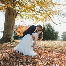 Photo of Stephanie Dee Photography in Alexandria, VA
