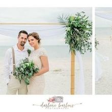 Photo of Tide the Knot Beach Weddings in St Petersburg, FL
