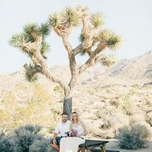 Photo of The Desert Lily B&B in Joshua Tree, CA - Katie McGihon Photography