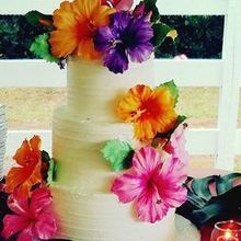 Photo for Danielle Kattan Cakes Review - Wedding cake