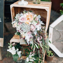 Photo of Cambria Nursery and Florist in Cambria, CA - Annie- Cambria Nursury Florist