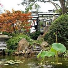 Photo for THE VIEWS CATERING at Mount Fuji Review - The gardens and views are amazing!