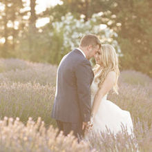 Photo of Leal Vineyards in Hollister, CA - Lavender field. 