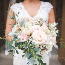 Photo for Beautiful Blooms by Jen Review