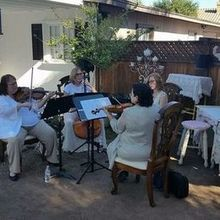 Photo of Sweetwater Strings in Scottsdale, AZ