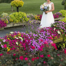 Baywood greens wedding pictures