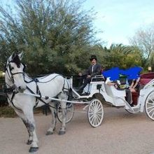 Photo of The Windmill Winery in Florence, AZ - Horse and carriage rides for the guests