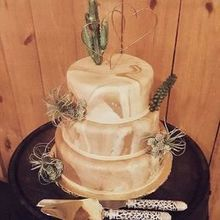 Photo for Delectable Delights Review - Our Grand Canyon Wedding cake