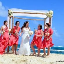 Photo for The Wedding Planner Plus Review - Add a comment...