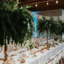 Photo for House of Blooms Review - Huge, beautiful fern centerpieces, pic © Barrera Photography