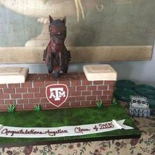 Photo for TASTY LAYERS, LLC Review - Grad party for horse jumper going to college!