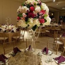 Photo of Royalty Linens & Events in Romeo, MI