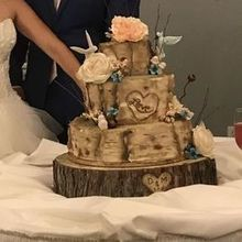 Photo for Who Made the Cake! Review - They made the hummingbirds and mushrooms on my cake.